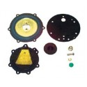 Impco repair kit for Cobra with cap